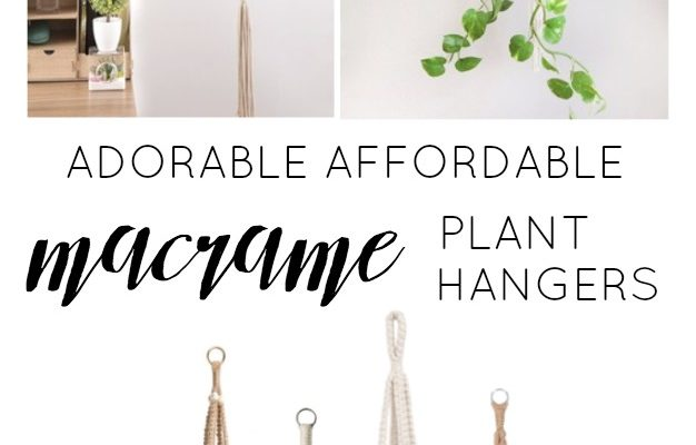 Adorable Affordable Macrame Plant Hangers
