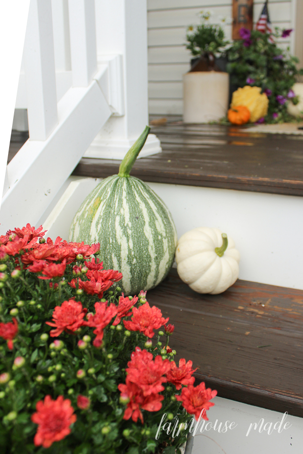 This is such a welcoming farmhouse style porch! Grapevine garland wreath with cotton stems, white pumpkins, gourds, and a layered rug make you want to come have a sit!