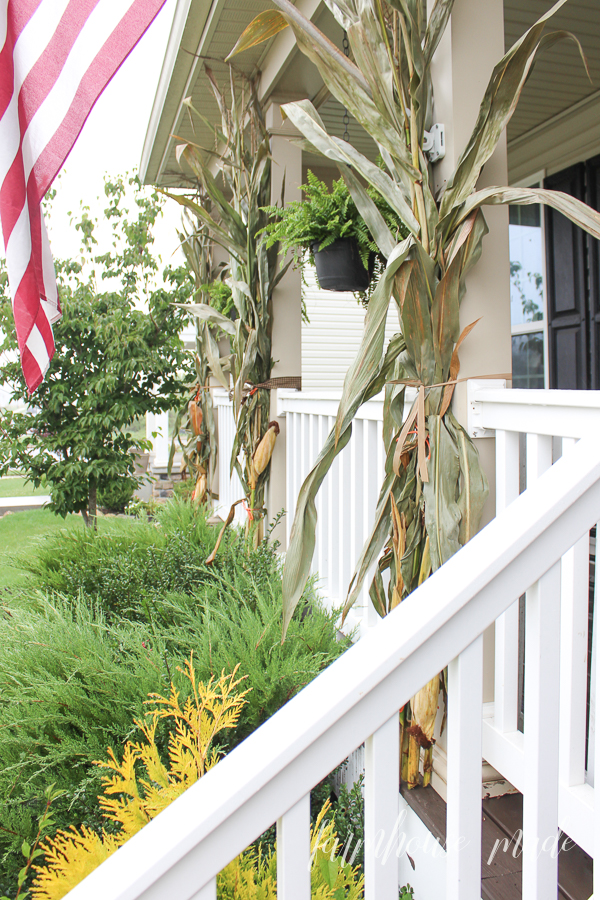 Corn stalks are a staple for an adorable farmhouse style fall porch!