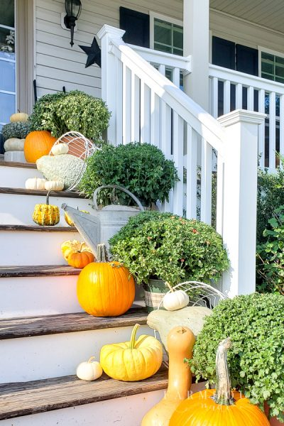 Beautiful heirloom pumpkins, mixed with orange traditional pumpkins, spilling out of a farm basket. Mixed with fluffy mums, on steps