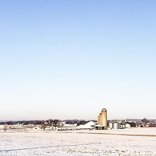 Winter farm snowy